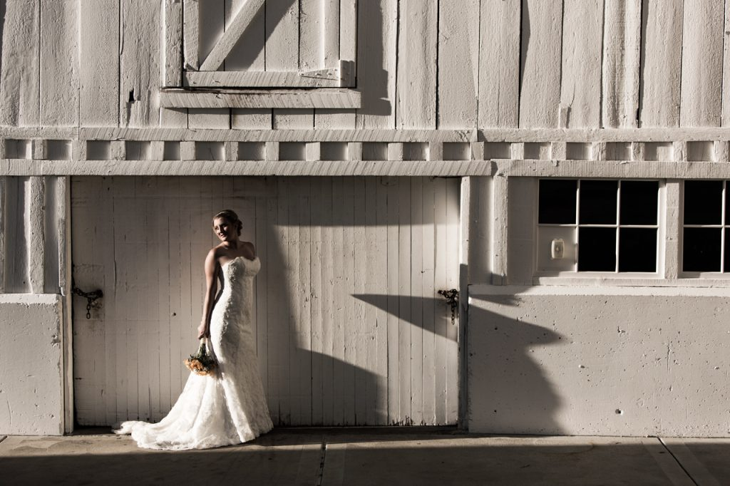 White Shapes and a Bride
